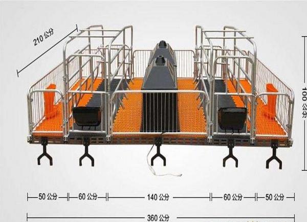 母猪产床的尺寸和图片介绍